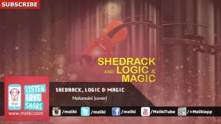 Download Natumaini (Cover) - Shedrack And Logic & Magic - Official Audio MP3 song and Music Video