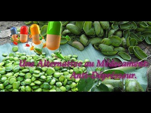 Gelule Griffonia | Propriétés - Fruit - Exclusif