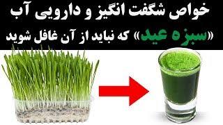 خواص شگفت انگیز و دارویی آب سبزه عید که نباید از آن غافل شوید