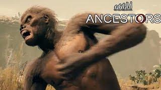 Новая Саблезубая кошка! Залатали раны Эволюция обезьян Ancestors The Humankind Odyssey #12