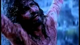 Sangre que me da la Paz