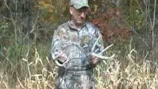 Whitetail Rattling Tips from Field & Stream