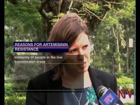 Health Focus: Drug resistant malaria
