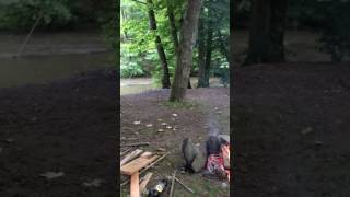 Camping houffalize