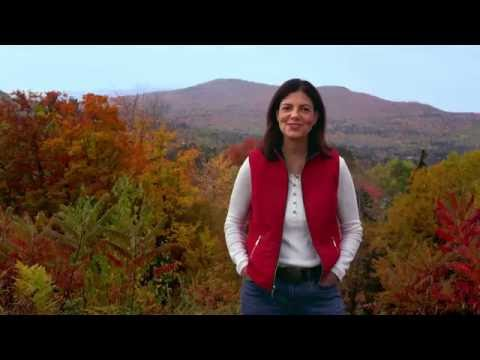 Worth It! | Kelly Ayotte | New Hampshire