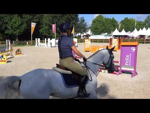 Horse Event 2017: Clinic Rob Ehrens