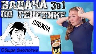 Комбо-задача по генетике 3 в 1! Урок биологии №71.