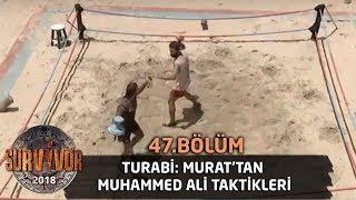Turabi: Murat'tan Muhammed Ali taktikleri | 47. Bölüm | Survivor 2018