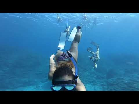 Video Of The Week | Diving Ishigaki Island, Japan | PADI x GoPro Evolution Contest Winner