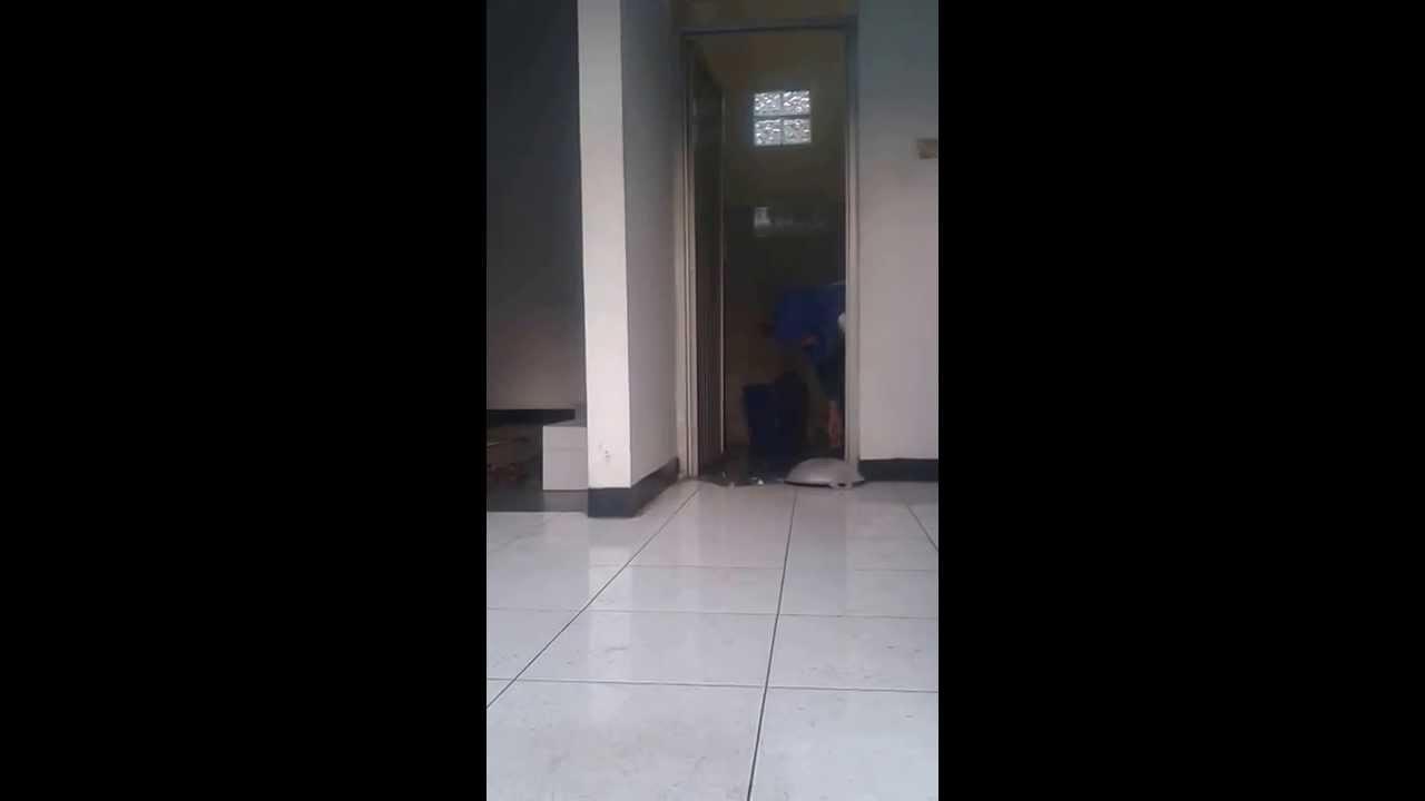 NGINTIP CEWEK DI KAMAR MANDI - YouTube