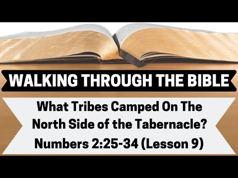 What Tribes Camped On The North Side Of The Tabernacle? [Numbers 2:17-24][Lesson 9][WTTB]