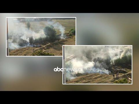 Download Zjarr ne Yzberisht, rrezikohen disa banesa  ABC News Albania