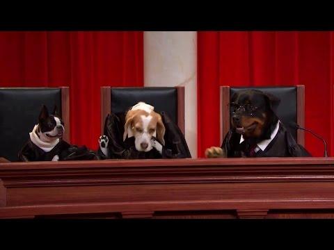 Hall v. Florida: Oral Argument - March 03, 2014