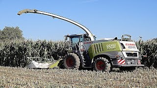 "GRUPPO PEA (2017) - CLAAS JAGUAR 980 ""DEMO TOUR"" - CORN SILAGE"