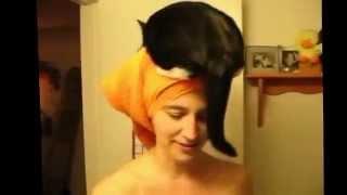 Как спят кошки  Смешное видео про кошек