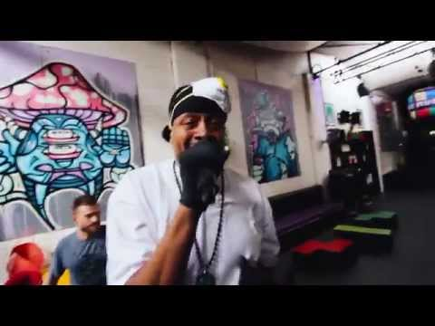 Dub Fx & Chali 2na • In Another Life