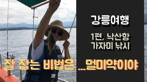 강릉 낙산항 가자미 낚시체험, 아이와 함께 리얼 낚시 - 1인 3만원 꼭하세요 !!무조건 해야해!!!