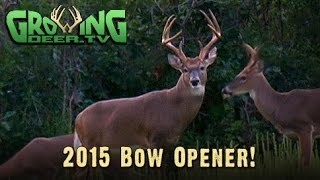 Bow Hunting: Close The Distance!