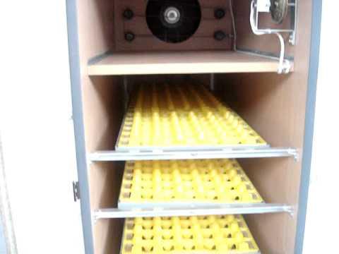 automatic egg incubator - YouTube