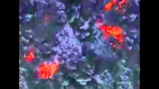 Извержение вулкана Йеллоустоун может произойти в любой момент!