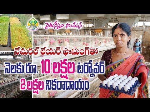 Organic Layer poultry Farm || నేచురల్ లేయర్ ఫామింగ్తో  నెలకు రూ. 10 లక్షల ఆదాయం