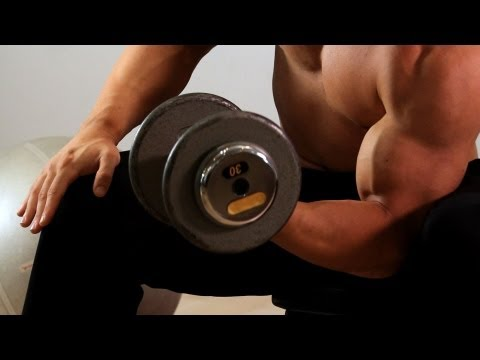 How to Do a Concentration Curl | Arm Workout