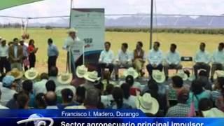 Francisco I. Madero, Durango.- Sector agropecuario principal impulsor.