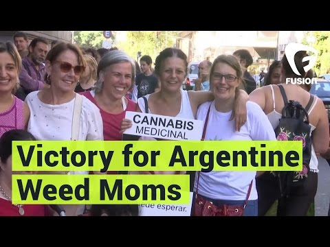 Argentinian Moms Win Fight for Legalized Cannabis Oil