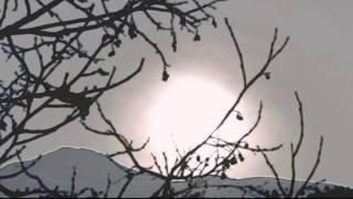 Miu diu (Pascal Gamboni- Siat Vanauns album 2009)