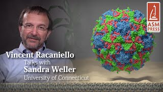 Interview with Sandra Weller, PhD - Principles of Virology, 4th Edition