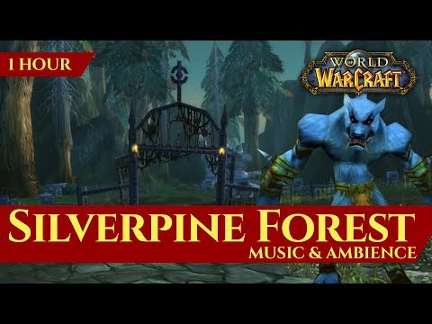 Vanilla Silverpine Forest - Music & Ambience (1 hour, 4K, World of Warcraft Classic)