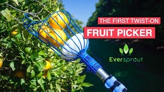 Best Fruit Picker Comparison   Eversprout vs. Ohuhu/ABCO Tech   Product Review & Unpacking screenshot 3