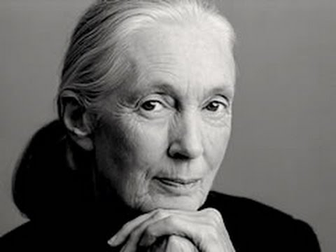 Jane Goodall Facts & Information - YouTube