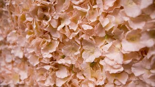 DIY Floral Backdrop - Perfect for Weddings & Showers!