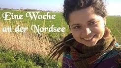 1 Woche Nordsee (Yoga) Eindrücke und Erfahrungen