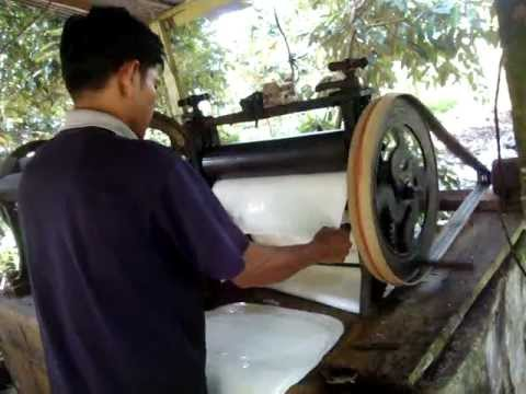 Rubber Tapping And Sheet Processing Doovi