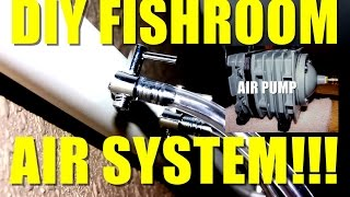 Diy Fishroom Air System!!!