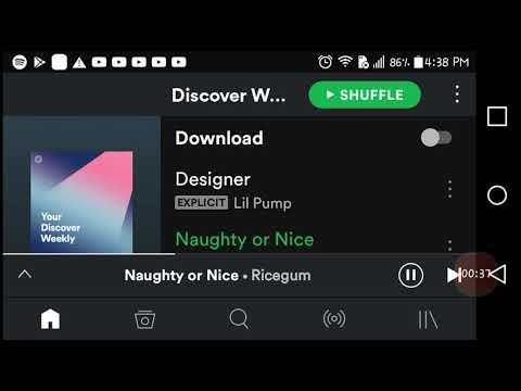 Ricegum (naughty &$ nice) spotify