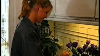 12 Steden, 13 Ongelukken - Renkum ''Het Verjaardagscadeau'' S08E09 (1997)
