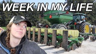 productive week in my life (planting corn and working ground!)