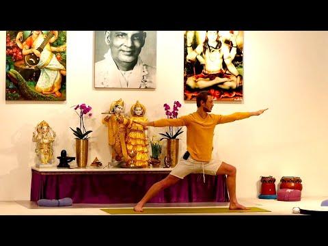 Video Yoga Vidya