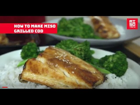 How to make the BEST miso grilled cod by Miso Tasty