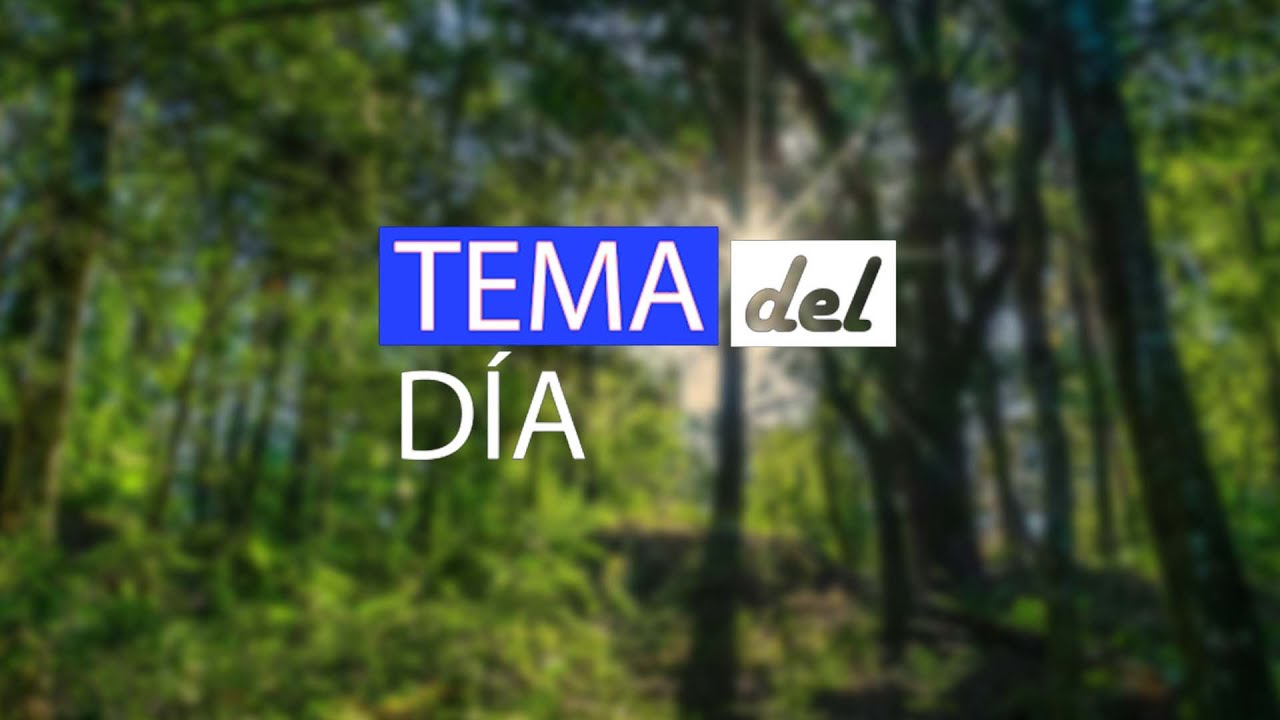 #TemaDelDía - Amad busca voluntarios