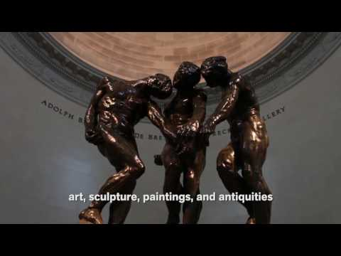 Fine Arts Museums of San Francisco Overview