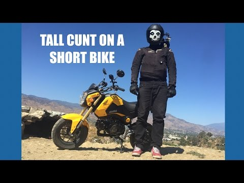GROMS ARE FOR TALL PEOPLEZ TOO