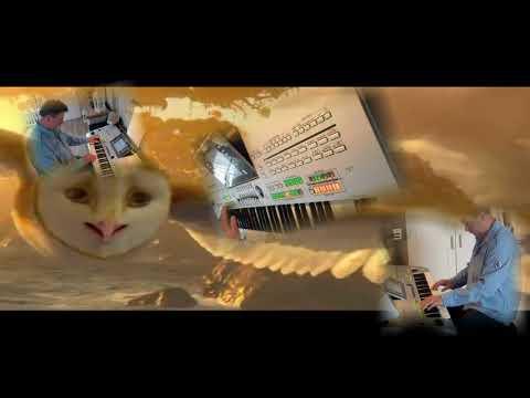 Vogel der nacht - Stephan Remmler (disco edit) Played by Jack on Tyros 3