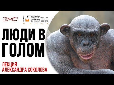 Александр Соколов. Люди