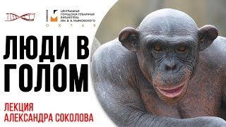 Александр Соколов. Люди в голом cмотреть видео онлайн бесплатно в высоком качестве - HDVIDEO