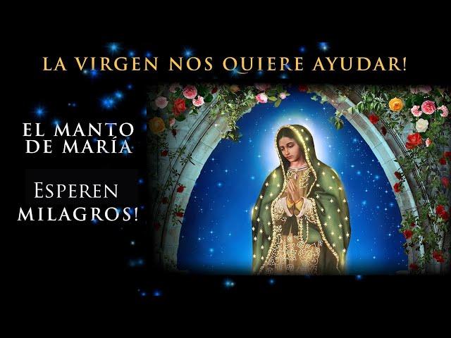 Dios Nos Quiere Ayudar! Una Nueva Consagración Mariana a Nuestra Señora de Guadalupe