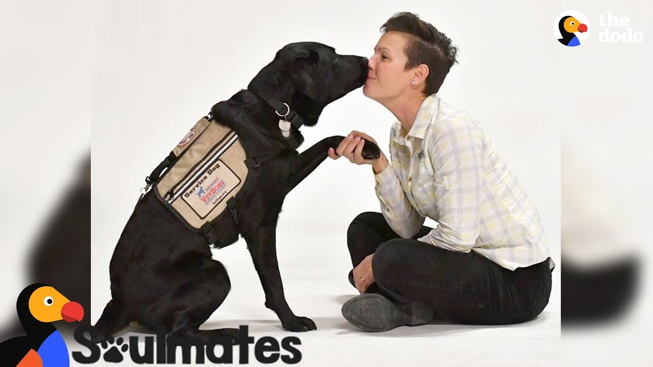 Special Dog Helps His Veteran Mom Get Her Life Back | The Dodo Soulmates
